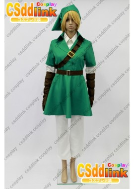The Legend of Zelda link cosplay costume custom-size